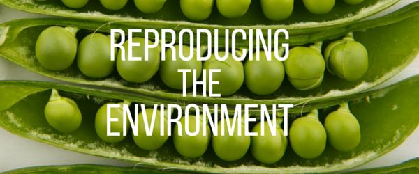 Reproducing the Environment Logo